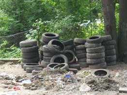 предписание на вывоз мусора образец