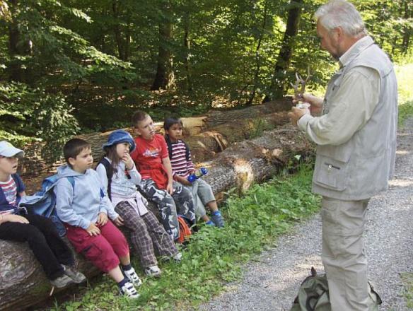 лесной детский сад Германия