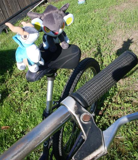 leonandtao ride a bike