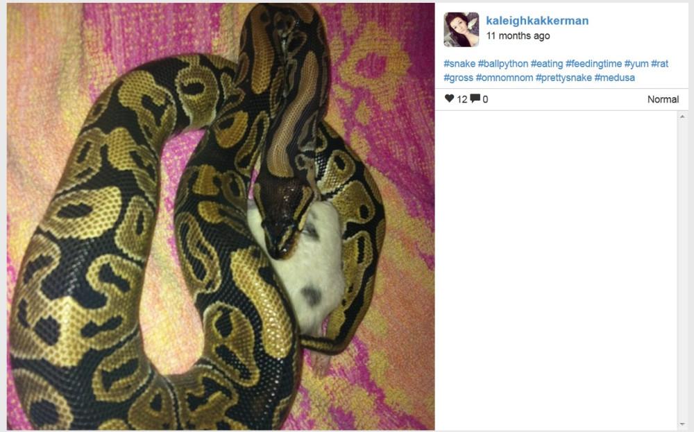 Kaleigh Akkerman Oshawa Snake Owner With Rat Ads July-Aug 2014_002