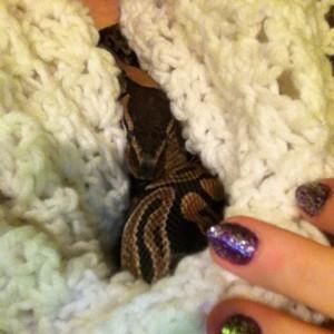 Kaleigh Akkerman Animal Hoarder Snake-2