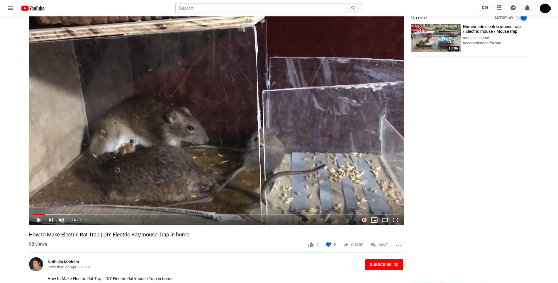 Please report these cruel Youtube channels!: rodentclub