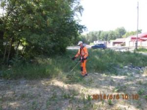 Кошение травы Ул. Пугачёвский тракт