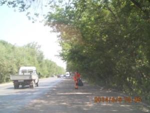 Подбор бытового мусора  ул. Пугачёвский тракт