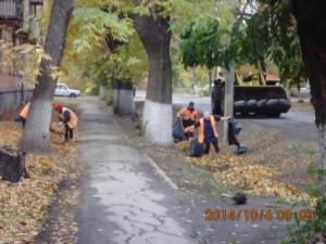 Уборка листвы ул.Зеленая