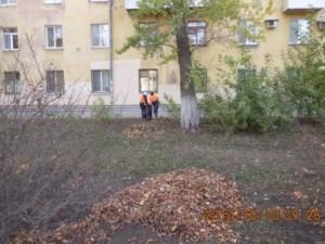 Уборка листвы ул. Фасадная