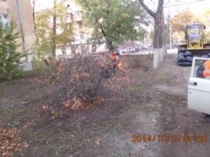 Уборка листвы Фасадная