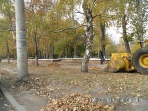 Стара-Загора сбо листвы (1)