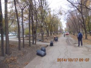 Очистка газона Пугачевский тракт