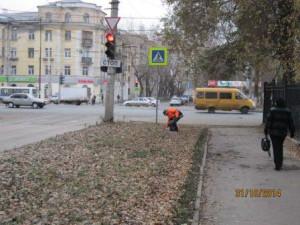 Воронежская (1)
