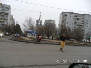 подбор Димитрова (2)