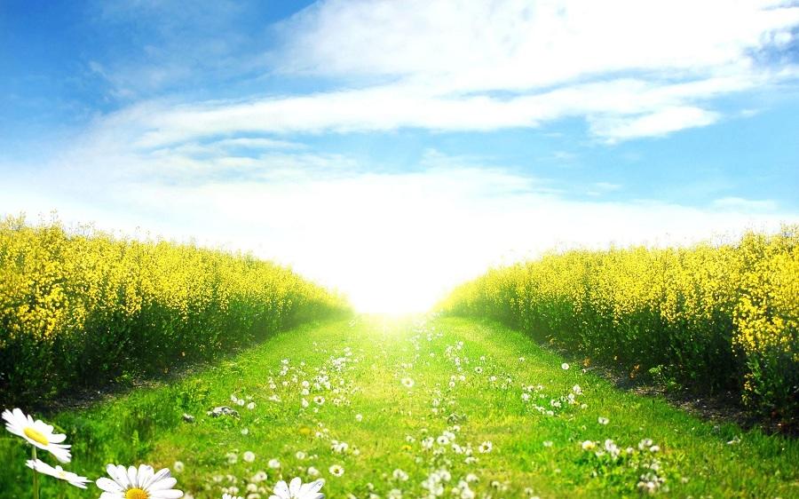 Картинки по запросу дорога к солнцу