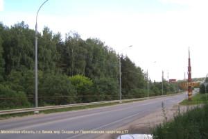 02  Лес, который будет уничтожен Юсифовым Алекбером Керим Оглы (ООО «Сходня»)