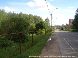 06  Лес, который будет уничтожен Юсифовым Алекбером Керим Оглы (ООО «Сходня»)