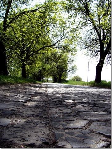 Дорога до Олики