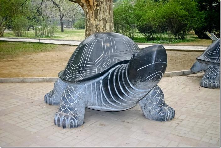 Пекінський зоопарк, черепах