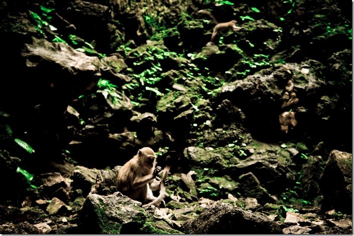 Печери Бату, Малайзія
