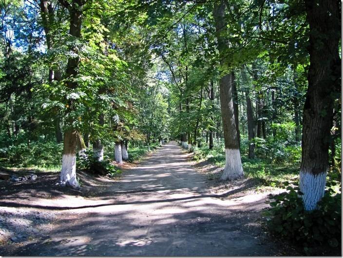 Березова Рудка, парк