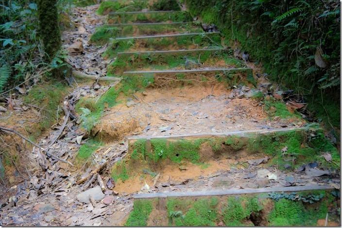 Кінабалу-парк