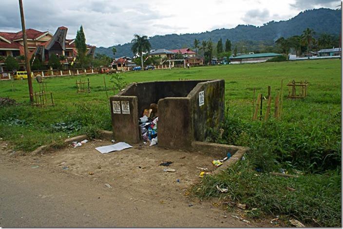 Індонезія. Тана Тораджа