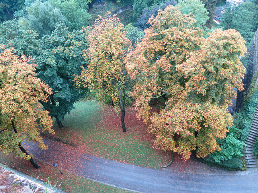 Luxembourg (4).jpg
