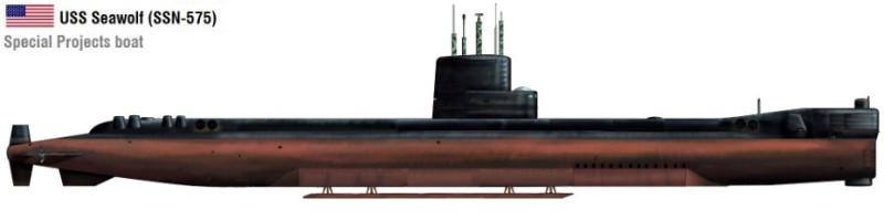 sw1.jpg