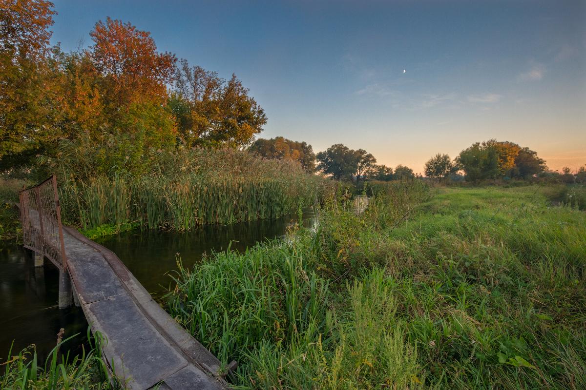 Фото реки тихая сосна