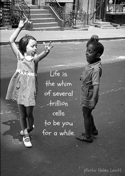 Life is a whim
