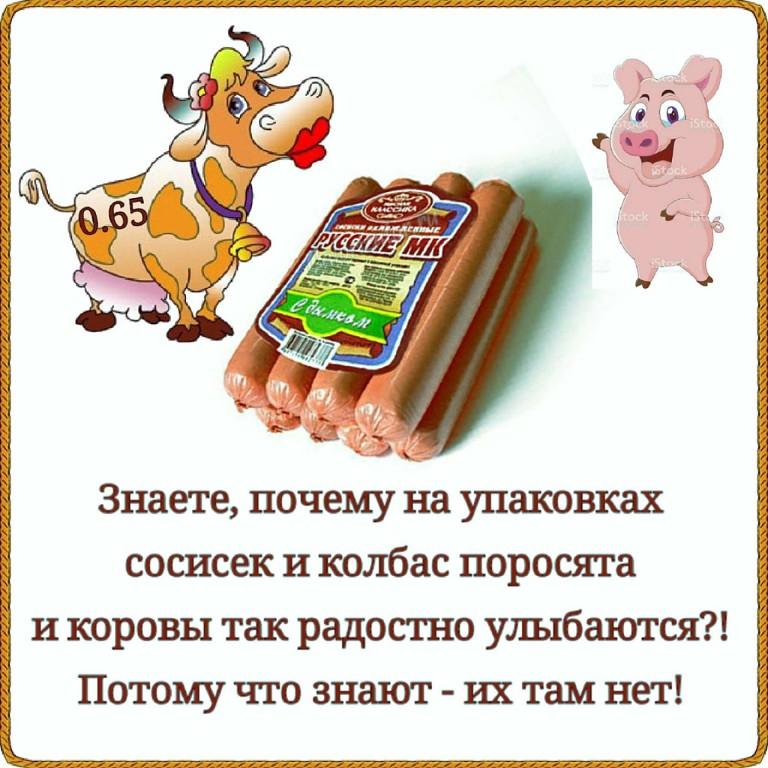 EOmnA_L0Gkc