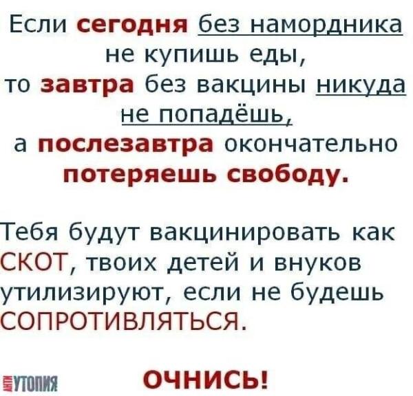 oQuYFOv35fc