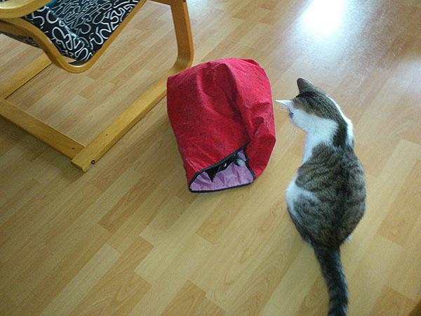 14 - bag a