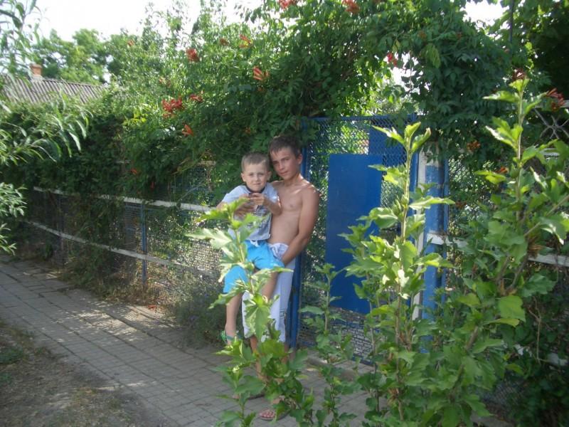 Внуки Ваня и Саша под калиткой из кампсиса