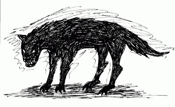 wolf-nelly