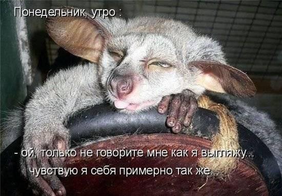http://ic.pics.livejournal.com/msustinov/76999213/128323/128323_original.jpg
