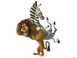 lev i zebra