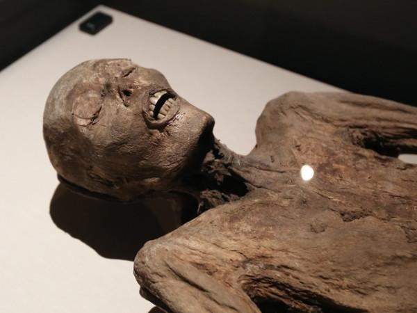 Реальные фото мумии с луны одну