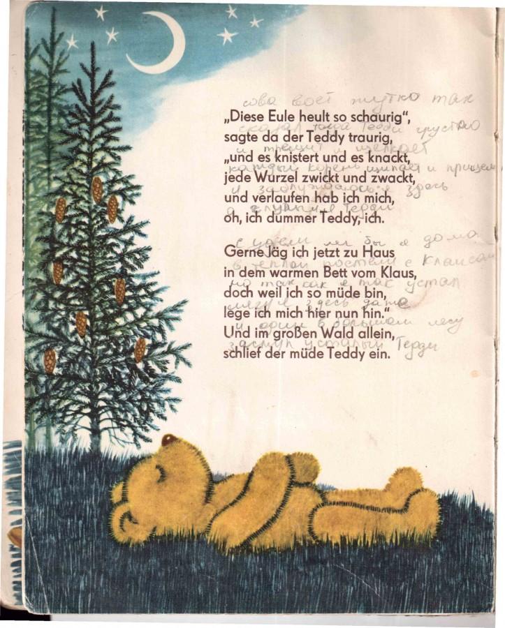 Тедди спит в лесу