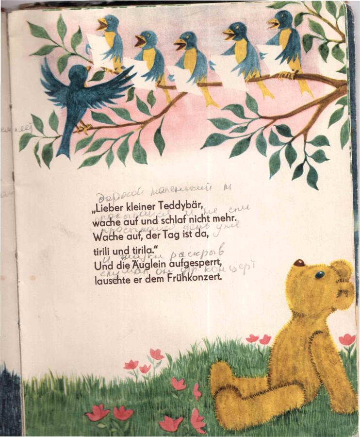 Тедди проснулся лесу