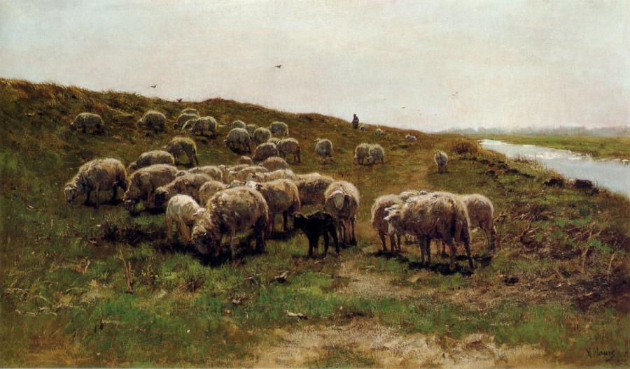 Anton_Mauve_-_Schapen_op_een_dijk[1]