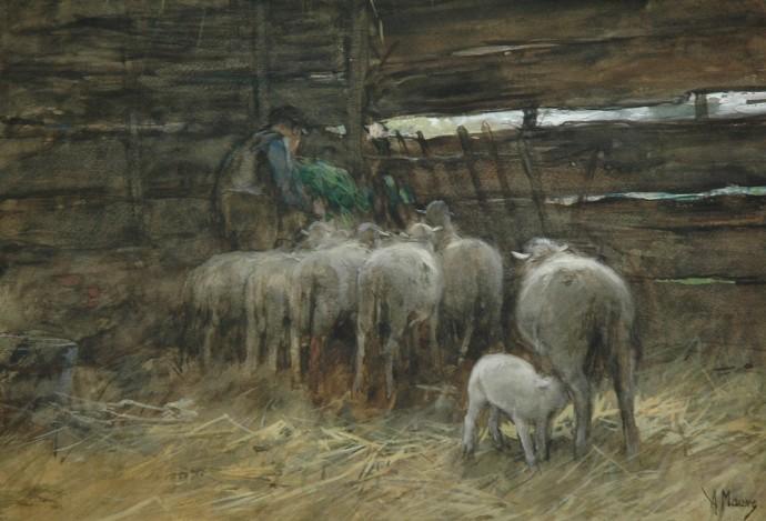 The_sheep_fold[1]