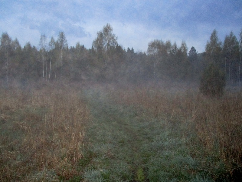 туман2.jpg