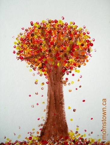 Fall_tree_and_energy_bites_027