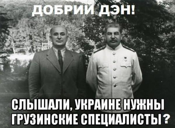 1438627610_gruzinskie-specialisty