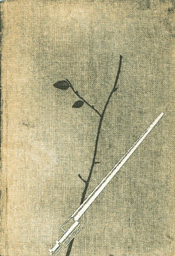 Первое издание романа