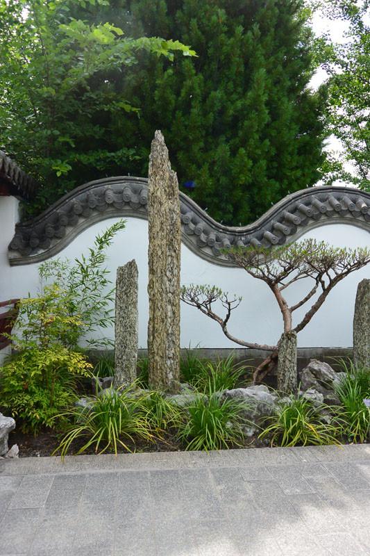 china  bonsay 1