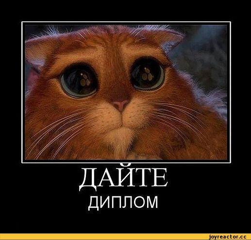 песочница-приколы-про-студентов-смешные-демотиваторы-65721