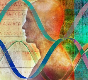 Права и свободы с точки зрения биологии человека
