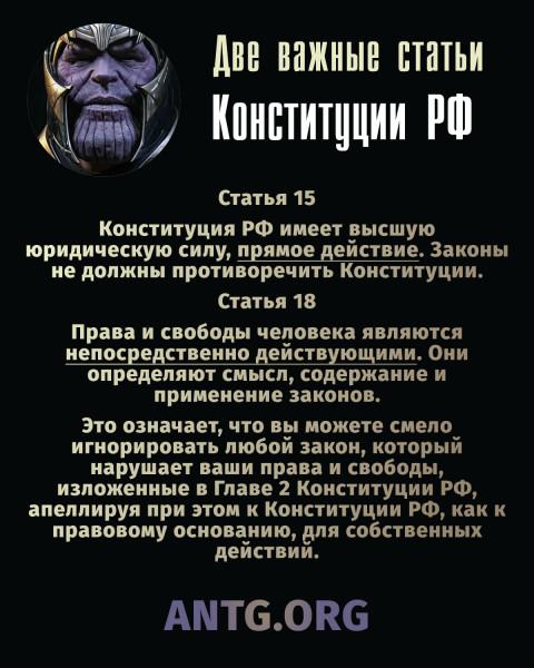 Две важные статьи Конституции РФ (в сокращенном варианте)