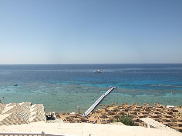 reef_oasis