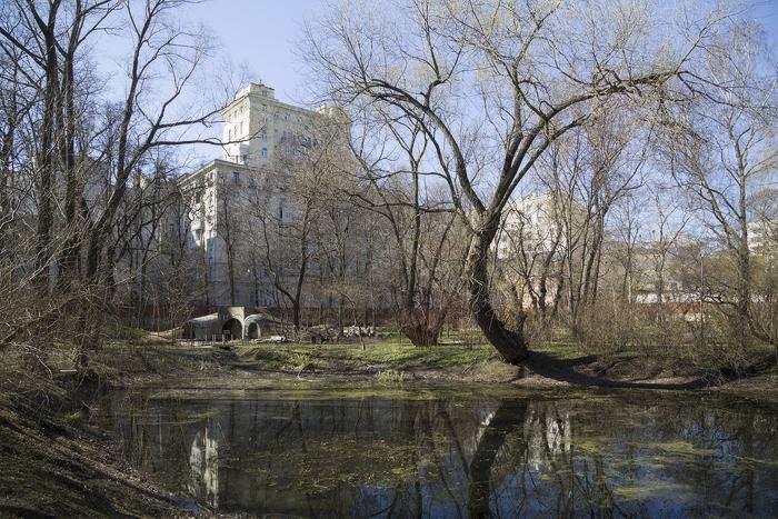 на старом пруду-06.jpg